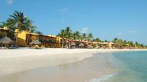 All Inclusive på hotel Tamarijn Aruba All Inclusive. Kun hos Spies.