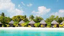 All Inclusive på hotel Kuredu Island Resort & Spa. Kun hos Spies.