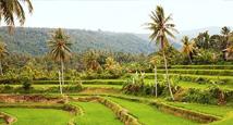 Vinterferie på Bali