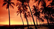 Vinterferie på Hawaii