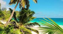 Vinterferie på Seychellerne