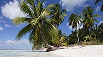Vinterferie i Den Dominikanske Republik