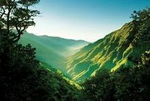 Sommerferie på Madeira