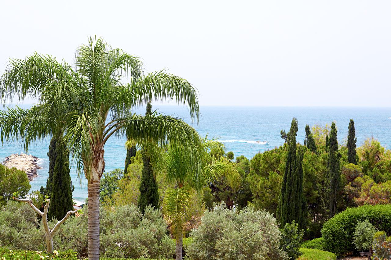 afbudsrejser cypern all inclusive