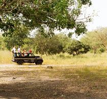 Rundrejse Senegal 8 dage.