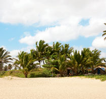 Rundrejse i Den Dominikanske Republik