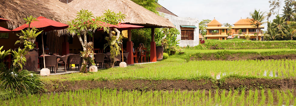 Rejsetips fra Ubud, Indonesien