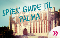 Palma guide