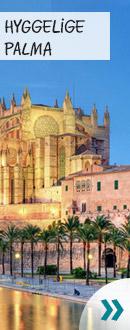 Guide til Palma
